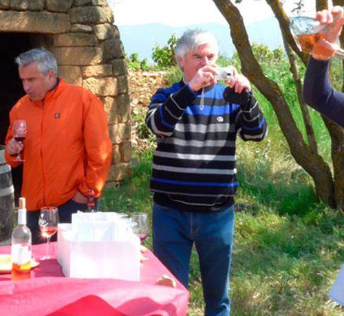 Grupo disfrutando del almuerzo entre viñedos