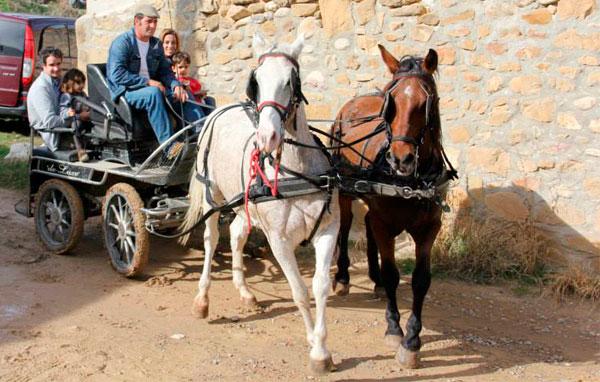 Paseo en carro de caballos