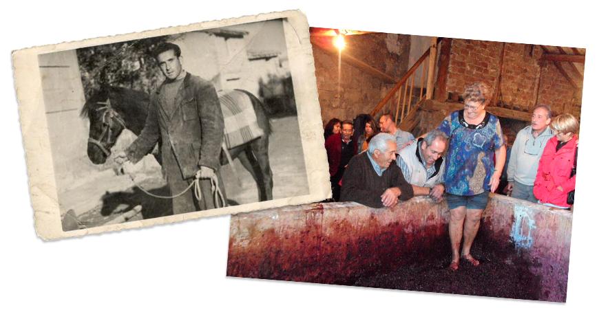 Fotos antiguas: Pisando la uva y abuelo con burro
